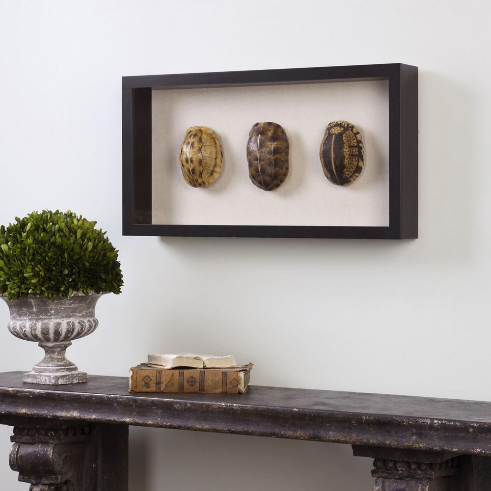 Tortoise Shells Shadow Box Wall decor 04068