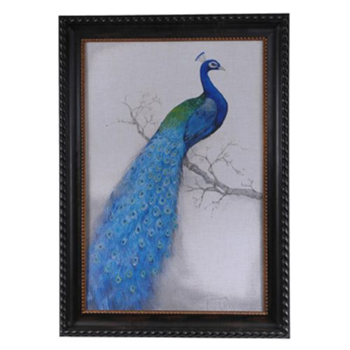 Peacock Blue 1 CSS2031