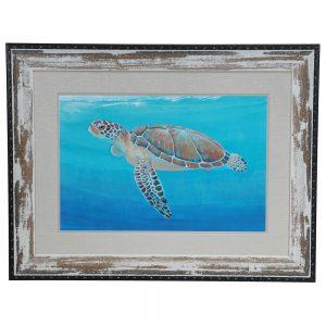 Ocean Sea Turtle CVA3237