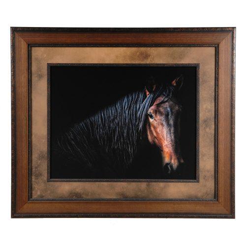 Horse Portrait CVA3362