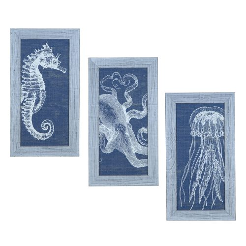 Denim Wash Jelly Fish CVA3509