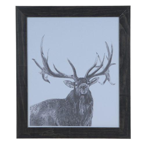 Elk CVA3558