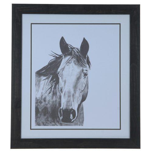 Horse Snapshot 1 CVA3619