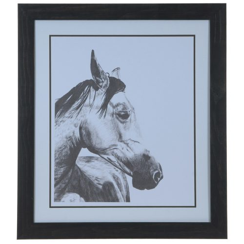 Horse Snapshot 2 CVA3620
