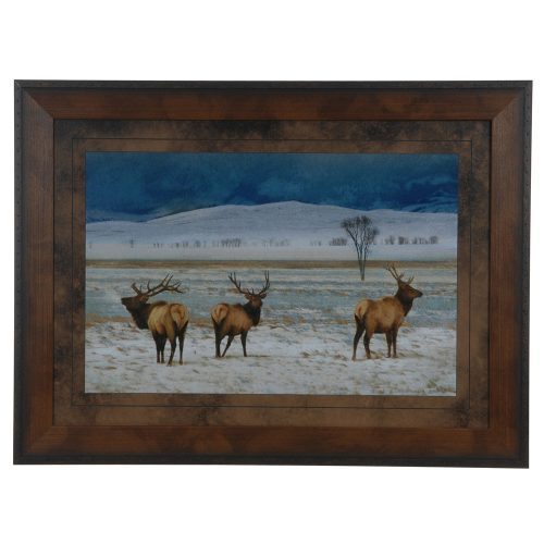 Refuge Elk CVA3657