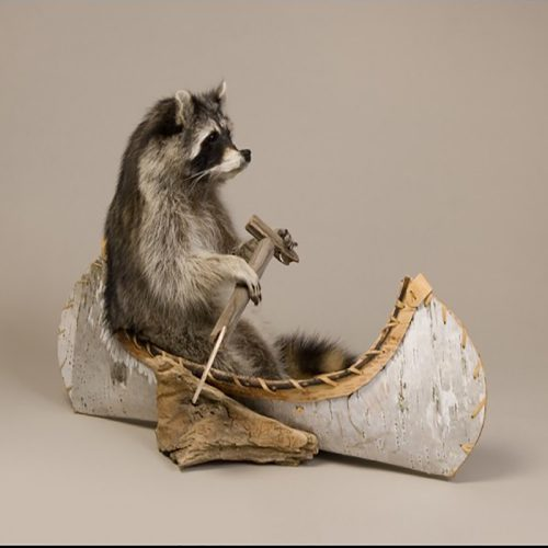 Canoeing Raccoon (Single)