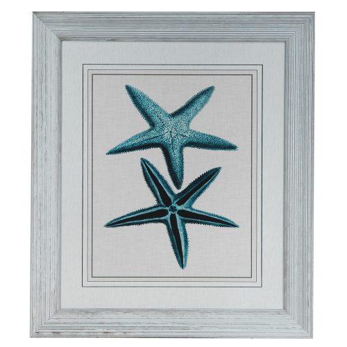 Starfish 3 CVA3320