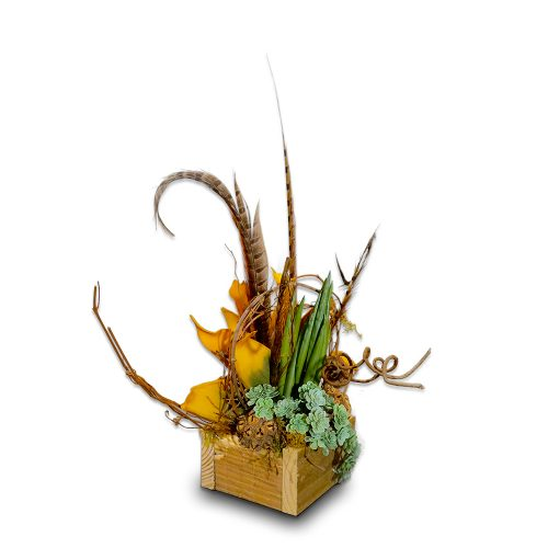 Succulent and Mustard and Feather Arrangement in Reclaimed Wood Box