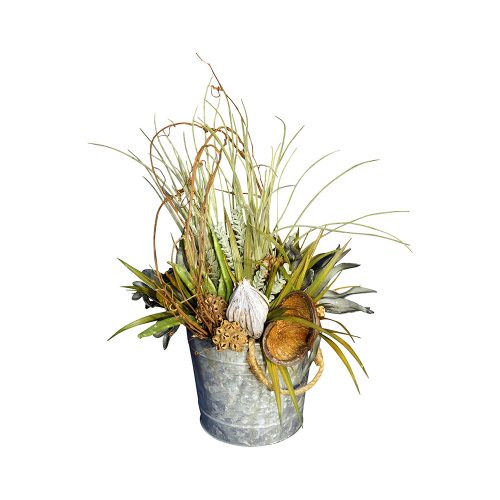 Natural Grapevine, Succulent, and Pod Arrangement